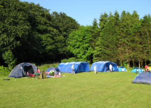 Adventure Camp @ Castlewellan Forest Park